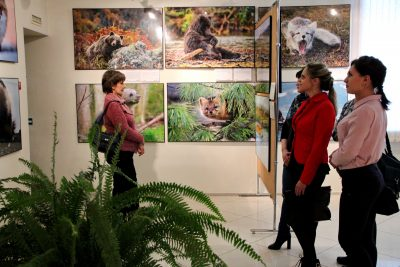В Прокопьевске прошло открытие выставки «Первозданная Россия»