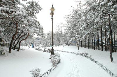 Предстоящая неделя в Кузбассе будет морозной