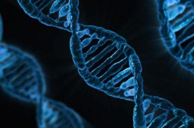 Учёные впервые частично реконструировали ДНК человека, жившего 200 лет назад