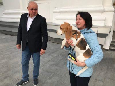 Сергей Цивилев нашёл хозяйку потерявшейся собаки