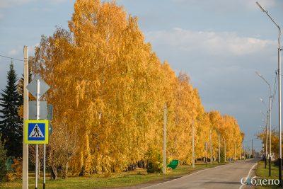 Сентябрь 2018 года стал самым тёплым в Кузбассе за последние 39 лет