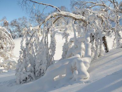 Синоптики рассказали о погоде на понедельник в Кузбассе