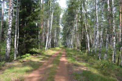 В Кузбассе появится ещё одна особо охраняемая природная территория