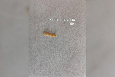 Фото: в кузбасской школе детей поили компотом с червями
