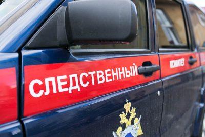 В Кузбассе младенец пробил череп в поезде: СК проводит проверку
