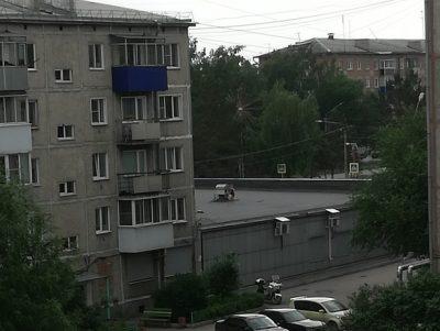 Фото: ребёнок на крыше испугал жителей кузбасского города