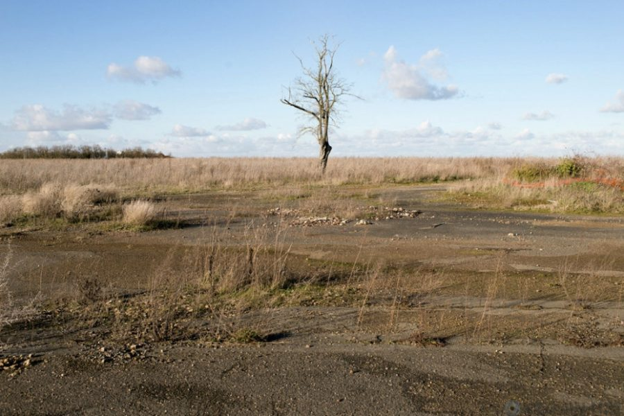 Кузбасс ядовитый: экологи зафиксировали опасное превышение отравляющего вещества в почве