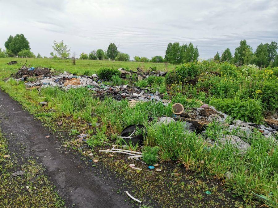 «Тут просто катастрофа»: кузбассовец возмущён мусорными «красотами»