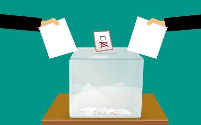 В Сибирском регионе за поправки к конституции будут голосовать онлайн